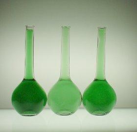 http://milksci.unizar.es/bioquimica/temas/pigmentos/auxpigmentos/clorofila.jpg